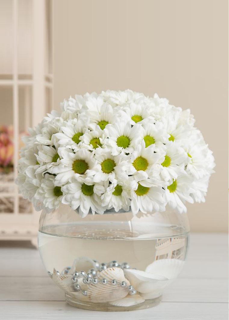 Akvaryum vazoda beyaz papatyalar