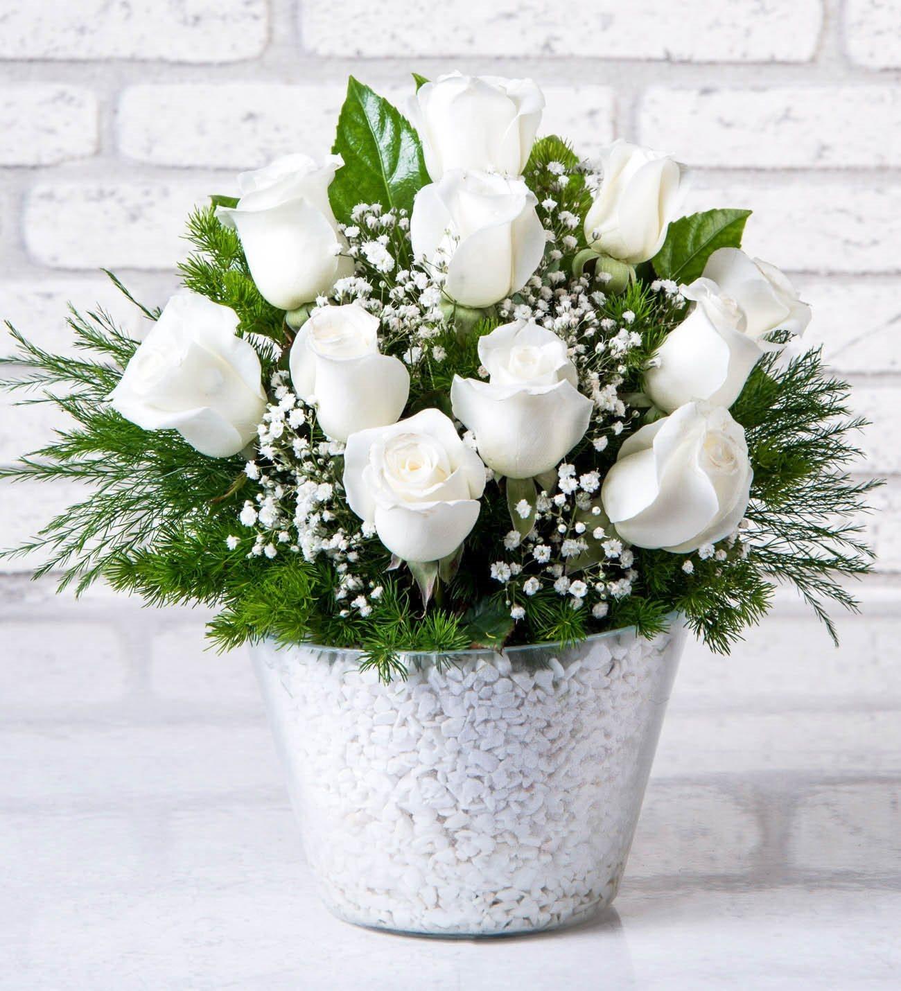 Konik vazoda beyaz güller