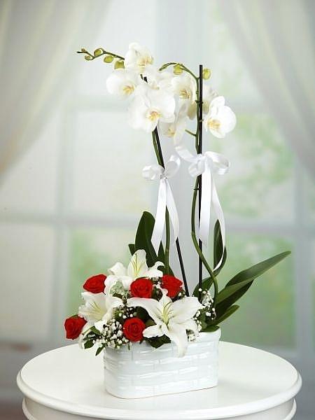 Seramik Vazoda Beyaz Oride,Lilyum ve Güller