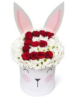 Tavşan kutuda baş harf ve papatyalar