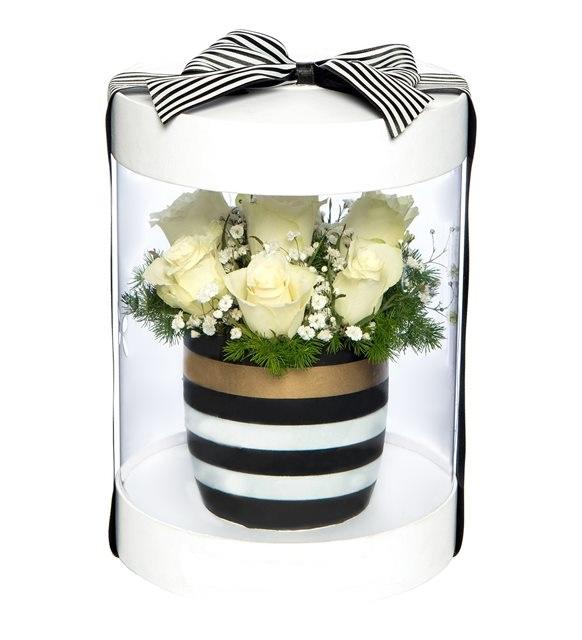 Özel kutu içerisinde seramikte beyaz güller